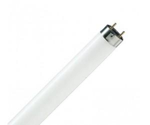 Электролампа люминисцентная PHILIPS TL-D 36W/54 (54016)